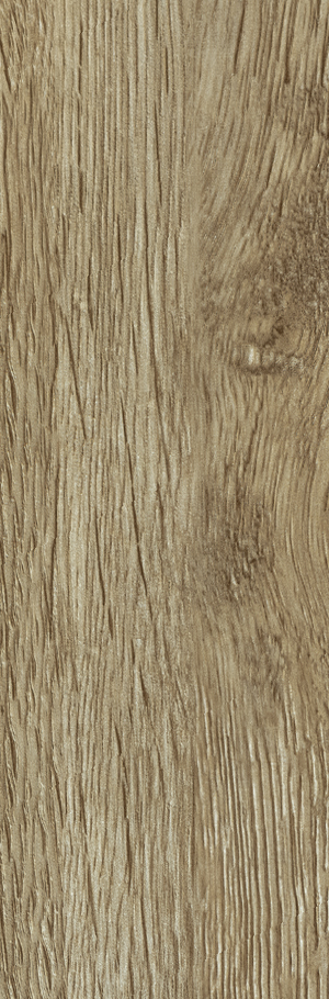 Forest oak Beige